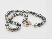 Tahitian Pearl Necklace - P.O.A